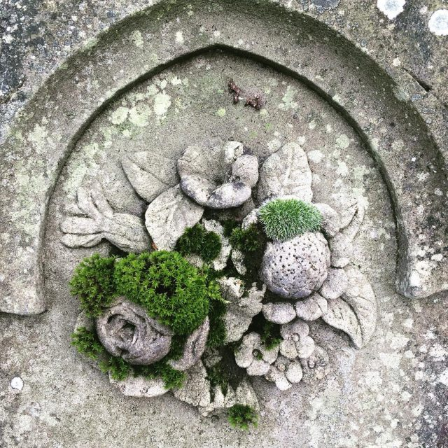 Walking through local graveyard Rather like that this old headstonehellip